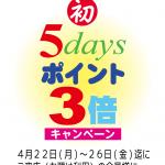 5ディズ3倍キャンPOP